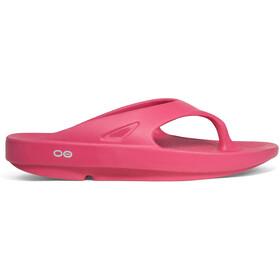 OOFOS Ooriginal Chaussures, fuchsia